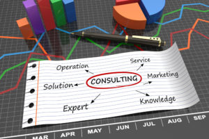 SAS Consulting Services